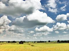 Giants on patrol (Sameli) Tags: summer wallpaper sky cloud nature beautiful field clouds suomi finland landscape landscapes skies horizon scene massive land fields scenes ylihärmä härmä top20finland