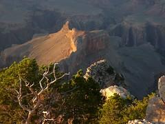 P1050521 (marinaneko) Tags: grand canyon tz1 06081417