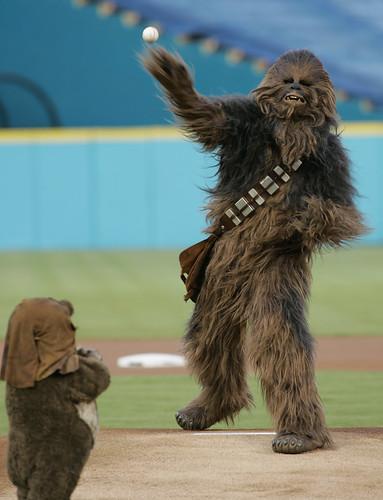 Chewbacca & Wicket the Ewok