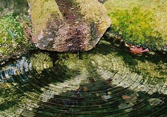 ripple - by gracias!