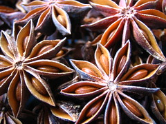 Chinese Star Anise (mtyto) Tags: food brown color colour kitchen canon star spice anise  ixy staranise canonixydigitall2 canonpowershotsd20 mtyto chinesestaranise canondigitalixusi5