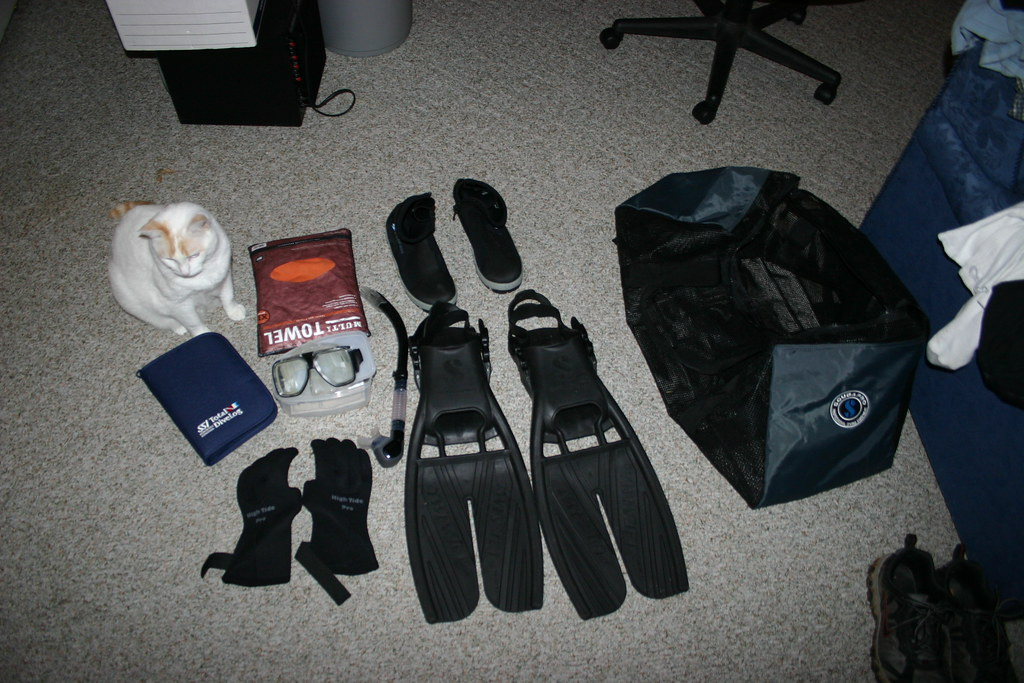 Some Dive Gear + Murray