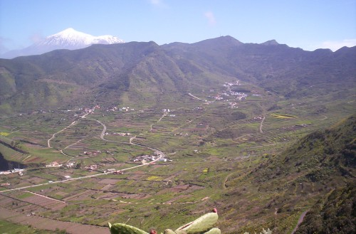 Upper El Palmar Valley
