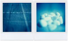 Constellations (Cea tecea) Tags: macro topv111 polaroid sx70 pair small