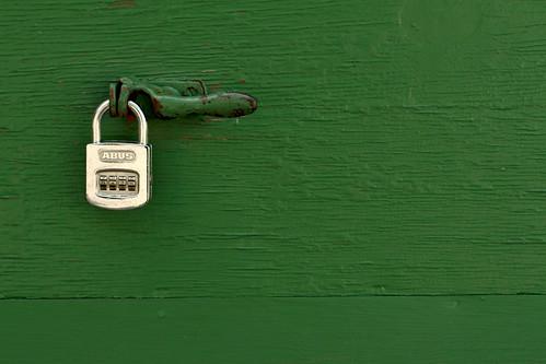 fotografia profissional cores fortes minimalista  deixa de frescura verde