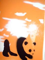 panda bear (eddywelchio) Tags: bear graffiti stencil panda oxford