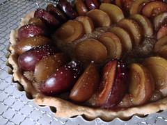279578142 d6057a424f m Slyvų pyragai. Slyvų receptai. Uogienė