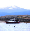 Boat on Beagle Channel in Patagonia with snow covered mountain (jillrowlandwv) Tags: boat beaglechannel sunrise mountainrange flower macro cave travel patagonia argentina chile southamerica tour tourist tourism outdoors hiking mountain wildlife penguins birds sea lake water reflection glacier scenery landscape nature naturalbeauty natural canon canonphotography canonaddicts canonphoto canonphotos meadow