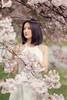 the melancholic aura (Samir D) Tags: grace samird 2018 canon canada eos 85mm12 bridal melancholy surreal fashion portraits cherryblossom cherry asian bc britishcolumbia