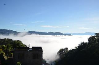 It's a Foggy Morning