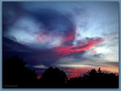 Oiseau de feu au couchant (bleumarie) Tags: fabuleuse