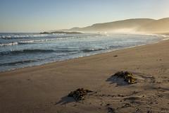 North (cliveg004) Tags: sandwoodbay sandwood capewrath sutherland legendary sunrise mist seaspray waves atlanticocean beach hills seaweed sand bluesky sky johnmuirtrust scotland coast nikon d5200