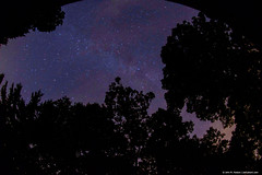 2018.08.06.1444 Zenith from My Front Deck (Brunswick Forge) Tags: 2018 grouped sky night stars tree woods botetourtcounty nature outdoor outdoors nikond500 favorited