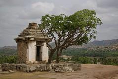 A Very Small Temple (brantliveson) Tags: tree cloudy sky architecture ruins ancient india vijaynagara empire trees boulders green monsoon rainy season building