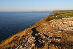 Cardigan Bay (Treflyn) Tags: cardigan bay sea golden hour view coast mwnt new quay aberaeron aberystwyth beyond ceredigion wales
