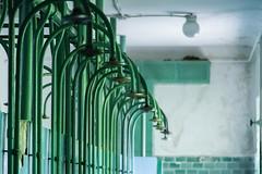 Waschstraße (michael_hamburg69) Tags: lostplace offthemap abandonedplace urbanexploration urbex verfall decay beautyofdecay gssd barracksbuilding waschstrase dusche shower green grün duschköpfe gemeinschaftsdusche commonshowers