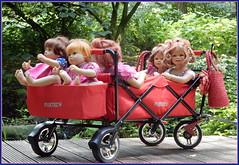 Der Wagen hat seine erste Fahrt gut überstanden, dann können wir morgen wieder raus ... (Kindergartenkinder 2018) Tags: shloss arcen venlo limburg kindergartenkinder sanrike annemoni tivi bebé nannett milina