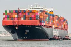 Essen Express (Zawodowy Fotograf) Tags: essen express hapag lloyd maersk cma yang ming oocl one nyk apl msc gct global container terminal bayonne new jersey hudson county canon5dmarkiii 100400mm port ship vessel merchant