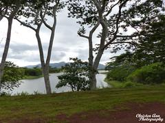 Hawaii_2017_1031 (Christen Ann Photography) Tags: 2017 doleplantation hawaii hawaii2017 holidays november2017 ohau pineappleexpress roadtrip usa