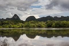 Mangrovové pobřeží (zcesty) Tags: ostrov mangrovy malajsie6 krajina hora malajsie langkawi dosvěta kedah malaysia my