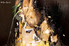 "Roma. Artwork by Luis Gomez de Teran for ""(Dis) Figured"" art show. Detail (R come Rit@) Tags: italia italy roma rome ritarestifo photography streetphotography urbanexploration exploration urbex arte art artphotography contemporaryart artecontemporanea streetartist exhibition artexhibition mostra artshow exhibit groupshow disfigured luisgomezdeteran gomez artist mix canvas plexiglass"
