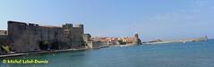 Vue panoramique de la baie de Collioure (m.lebel) Tags: côterocheuse côtevermeille occitanie payscatalan paysdoc catalogne catalan roussillon midipyrénées pyrénéesorientales méditerranée catalunya joyau crique baie plage portdepêcheurs vuepanoramique
