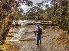 Creek in Reserva Biológica El Quimi, Cordillera del Condór (Ecuador Megadiverso) Tags: andreaskay cordilleradelcondór ecuador elquimi river