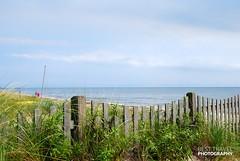 Cape Cod (Travel around Spain) Tags: cabocod capecod península massachusetts estadosunidos marismas