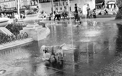 Summertime in the city (bensonfive) Tags: dog childrenplaying waterfall blackwhitephotography monochrome streetphotography summertime westminster westend london canon 5d 35mm