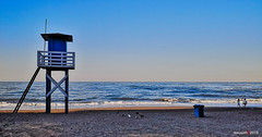 early in the morning (jesuscm_Huawei P20 series) Tags: playa beach watchtower vigilancia mar sea cielo sky limpio clean sand arena gente people gaviotas seagulls rincondelavictoria málaga spain huaweip20 jesuscm