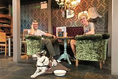 The Duke and Rye (Jainbow) Tags: dukeandrye chichester restaurant pub rescuedog romanianrescuedog adoptdontshop