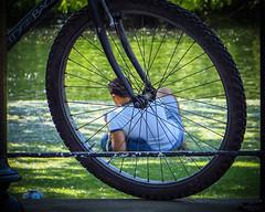 Bicycles, bicycles... ;) :) (Solène.CB) Tags: bicycle bicyclette vélo man homme handsome park parc solènecb summer été london londres water eau lake lac