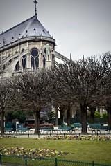 Notre-Dame de Paris (SarahCuse315) Tags: de paris notre dame notredamedeparis gloomy seine france europe francia ancient flyingbuttress architecture gargoyle rose park