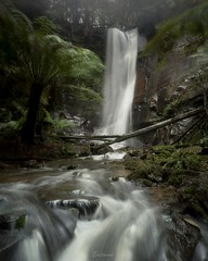 It was a cold, wet and windy day (Gary Eastwood) Tags: waterfall water forest fog mist rain ndfilters longexposures nikon nikond750 nisifilters streams winter