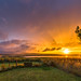 Sunset over Sandend Bay