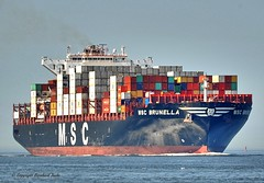 MSC Brunella (Bernhard Fuchs) Tags: boat cargo cargoships cuxhaven containerschiff containerschiffe elbe fracht frachtschiff frachtschiffe msc nikon schiffe ship ships vessel water schiff boot wasser meer