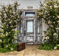The Suitcase (Kool Cats Photography over 10 Million Views) Tags: design door wall art architecture windows flowers textures green grass photography oklahoma oklahomacity