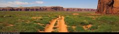 20160824_16 Sandy road, vegetation, & sandstone rocks in Monument Valley, Arizona (ratexla) Tags: ratexlasgreentortoisetrip2016 ratexlascanyonsofthewesttrip2016 greentortoise canyonsofthewest 24aug2016 2016 canonpowershotsx50hs arizona usa theus unitedstates theunitedstates america northamerica nordamerika earth tellus photophotospicturepicturesimageimagesfotofotonbildbilder wanderlust travel travelling traveling journey vacation holiday semester resaresor ontheroad sommar summer beautiful nature landscape scenery scenic desert sandstone shrub shrubs favorite