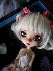 Llegadas - Prince Artemis custom (Lunalila1) Tags: doll groove mio kit pullip fc custo custom prince artemis llegadas wig sesion