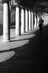 Mantova (Fulvio Frioli) Tags: mantova mantua italia italy nikon nikkor 50mm street city urban black white bianco nero colonne columns portici bw light luce architettura architecture archi