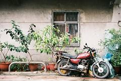 (YL.H) Tags: agfa vista analog film canon 500n taipei 底片 台北 motorcycle taiwan