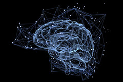 brain (mghresearchinstitute) Tags: network brain dendrite intelligence system complexity solution think cell neurons nervous signal neurotransmitter neuralbrain background medical mind human activity concept technology idea medicine abstract creative biology science thinking inside anatomy connected organ xray mental physiology cyberspace processor data memory connection smart intellect ability education information