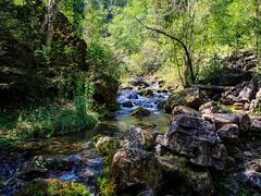 Iron Creek (AngelicaMDavila) Tags: southdakota creek landscape blackhills green stream water river rocks summer