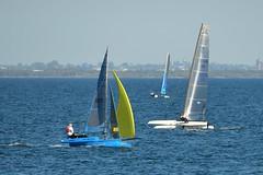 800_4765 (Lox Pix) Tags: queensland qld australia catamaran trimaran hyc humpybongyachtclub winterbash loxpix foilingcatamaran foiling bramblebay sailing race regatta woodypoint boat