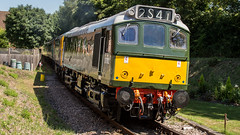 25262 (JOHN BRACE) Tags: 1966 british rail derby built class 25 bo diesel electric loco 25262 d7612 carried number 25901 when dedicated north west freight services seen groombridge spa valley railway two tone green livery