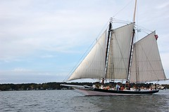 Chesapeake Bay Pungy Schooner Lady Maryland (Chesapeake Bay Maritime Museum Photos) Tags: lady maryland living classroom foundation chesapeakebaymaritimemuseum pungy schooner chesapeake bay pink stmichaels md october 2018