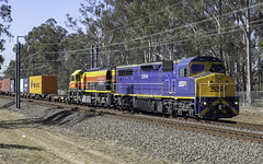 SSR Southern Shorthaul Railroad loco C504, with CRL loco BRM002, as 1845 (Paulie's Time Off Photography) Tags: 1845 freighttrain locomotivec504 ssrsouthernshorthaulrailroad werringtonnsw olympus olympusomdem10 paulleader trainspotting train locomotive loco engine diesel railway rail railroad railtransport transport transportation freight nsw newsouthwales australia c510 railpage:class=21 railpage:loco=c510 rpauviccclass rpauviccclassc510