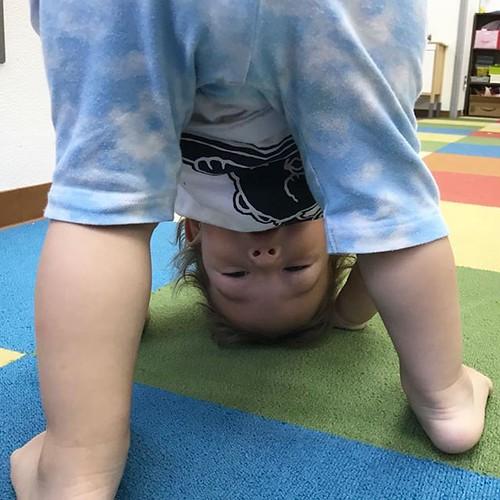 Peekaboo! I see you! 😘 #preschool #kindergarten #daycare #baby #toddler #adorable #cute #peekaboo #tokyo #東京 #港区 #幼稚園 #保育園 #ムチムチ #いないいないばあ #遊ぼう #かわいい