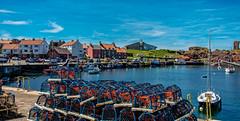 The harbour (Peter Leigh50) Tags: lobster pots harbour sea boat castle building house sky tourist blue fujifilm fuji xt2