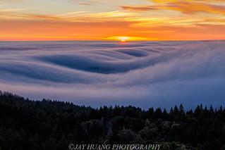 Fog Waves- Mt.Tamalpais State Park, CA